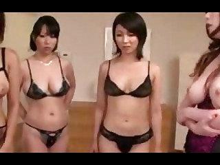 Paradise in Japan: Tit Trouble
